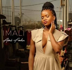 Ami Faku – Imali zip album full download zamusic 300x288 Afro Beat Za 2 - Ami Faku – Mbize ft. 37MPH