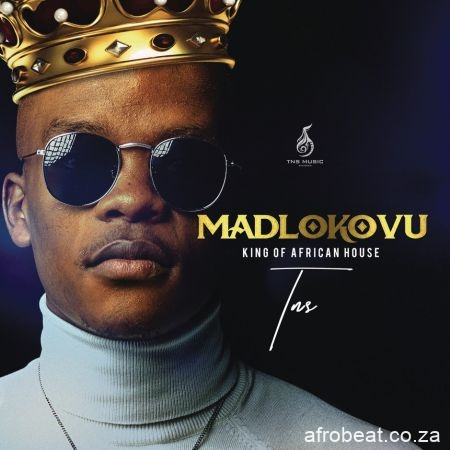 TNS Madlokovu King of African House Album Afro Beat Za 2 - TNS – Ng'dlala Bantu ft. Minnie Ntuli