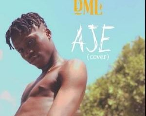 Fireboy DML   Aje cover 1 Afro Beat Za 300x240 - Fireboy DML – Aje (Cover)