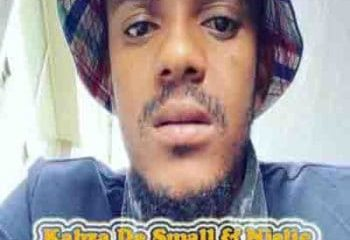Kabza De Small Nana Thula Ft. Njelic Afro Beat Za 350x240 - Kabza De Small – Nana Thula (Sample) Ft. Njelic