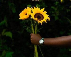 Sipho The Gift – Bloom mp3 download zamusic 300x300 Afro Beat Za 300x240 - Sipho The Gift Bloom EP