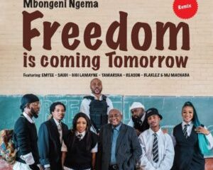 Dr Mbongeni Ngema ft Emtee Saudi Gigi Lamayne Tamarsha Reason Blaklez DJ Machaba Freedom Is Coming Tomorrow Remix 768x768 1 300x300 Afro Beat Za 300x240 - Dr Mbongeni Ngema ft Emtee, Saudi, Gigi Lamayne, Tamarsha, Reason, Blaklez & DJ Machaba – Freedom Is Coming Tomorrow (Remix)