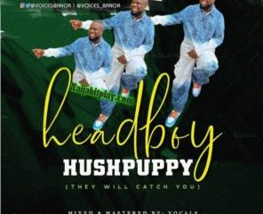 PicsArt 1592136270277 296x300 Afro Beat Za 296x240 - Voices Banor – Headboy Hushpuppy (They Will Catch You)