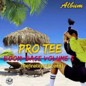 Pro Tee ft DJ Sfrench – Book Of Bass 300x300 - Pro-Tee – Floor Spinner