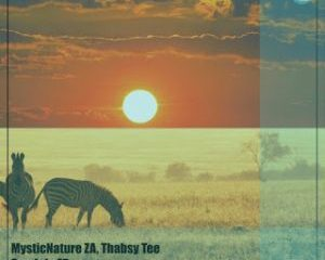 MysticNature ZA & Thabsy Tee – Sondela (Native Tribe & DJ Two4 Rampage Remix)