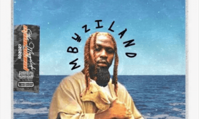 Stilo Magolide – Mbuzi In The Water