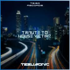 Tebu Sonic – Tribute to House Victimz - Tebu Sonic – Tribute to House Victimz