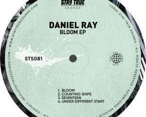 Daniel Ray – Under Different Stars 300x240 - Daniel Ray – Counting Ships