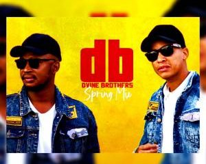 Dvine Brothers – Spring Mix 2020 300x240 - Dvine Brothers – Spring Mix 2020