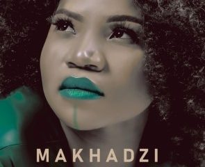 Makhadzi – Madzhakutswa Ft. Jah Prayzah Unofficial Audio 295x240 - Makhadzi – Happiness Ft. Mr Brown
