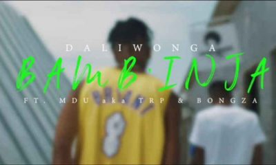 Screenshot 20201113 165256 1605282892311 1605282902672 400x240 - Video: Daliwonga – Bamb'inja ft. Mdu aka TRP & Bongza