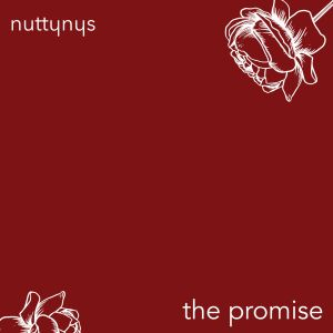 Nutty Nys – The Promise Hiphopza - Nutty Nys – The Promise