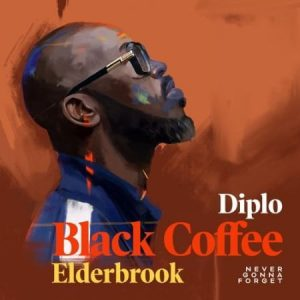 Black Coffee – Never Gonna Forget Ft. Diplo Elderbrook Hiphopza 300x300 - Black Coffee – Never Gonna Forget Ft. Diplo & Elderbrook