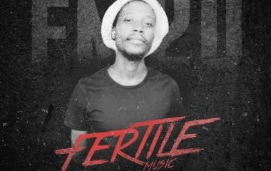 Tweegy – Fertile Music Vol. 20 Mix Hiphopza 380x240 - Tweegy – Fertile Music Vol. 20 Mix