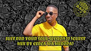 Ceega Wa Meropa – Just For Your Soul Session 22 Guest Mix Hiphoza - Ceega Wa Meropa – Just For Your Soul Session 22 (Guest Mix)