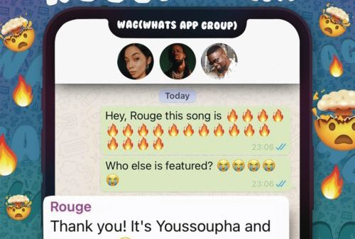 Rouge – W.A.G Ft. Sarkodie Yousspupha Hiphopza 500x337 - Rouge – W.A.G Ft. Sarkodie & Yousspupha