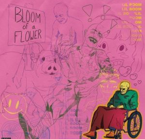 Lil Boom Bloom of A Flower AUDIO DOWNLOAD e1631205667941 Hip Hop More Afro Beat Za 300x286 - Lil Boom – Bloom of A Flower